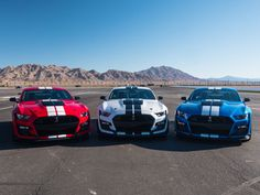 Ford Mustang Shelby Gt500, Ford Shelby, Mustang Cars, Ford Mustangs, First Mustang, Ford V8, Ford Bronco, Carroll Shelby, Pony Car