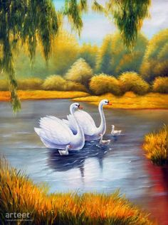 Swans And Three Babies was completed by Wang Shi and being uploaded on 09 Aug The painting was painted on a X , 88 cm X 121 cm linen canvas. This painting has color tones ranging from yellow to white and incorporates themes of Animals and Landscapes. Swan Painting, Easy Canvas Painting, Animal Paintings, Animal Drawings, Art Drawings, Paintings For Sale, Swan Wallpaper, Swan Pictures, Bird Art