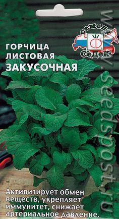 Горчица листовая Закусочная, 1 г