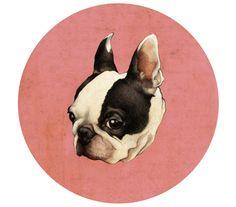 Gorgeous dog illustrations!