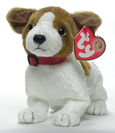 Kippy, Ty BBOM Beanie Baby dog, reference information and photograph. Beanie Baby Dog, Ty Beanie Boos, Baby Doll Nursery, Baby Dolls, Plush Animals, Stuffed Animals, Stuffed Toy, Beanie Babies Value, Ty Bears