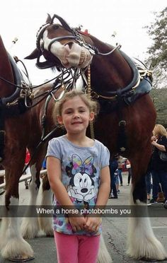 This is probably one of the greatest animal photobomb, a photogenic horse standing behind a little girl and smile at the camera.