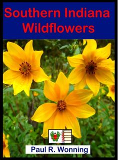 Southern Indiana Wildflowers This wildflower identification guide includes a full season of common spring, summer and autumn blooming wildflowers with photographs. Southern Indiana Wildflowers allows easier identification of wildflowers in the field because it is arranged by order of bloom and color. Though written for southern Indiana, the guide should be useful for those living in southern Ohio and Illinois as well, though there will certainly be regional variations in color and bloom… Early Spring, Spring Summer, Spring Wildflowers, Great Christmas Gifts, Garden Spaces, Native Plants, Flower Pots, Wild Flowers, Indiana