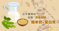 從早餐開始啟動「燃脂開關」!喝米奶+蛋白質 | 吃出健康 | 華人健康網