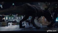 T Rex Jurassic Park, Jurassic Park Series, Jurassic World Dinosaurs, Jurassic Park World, World Gif, Best Toddler Toys, Big Cats Art, Tiger Art, Falling Kingdoms
