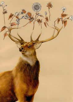 This image makes me think of japanese Deer God Shishigami, with his flowery antlers