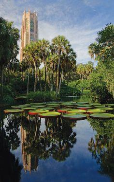庭園のデザインを担当したのは、アメリカのランドスケープアーキテクチャーの巨匠フレデリック・ロー・オルムステッドの息子、フレデリック・ロー・オルムステッド・ジュニアです。父の確立した曲線を多く用いり自然の美しさを強調し賛美するスタイルは、ボック・タワー・ガーデンズにも受け継がれています。