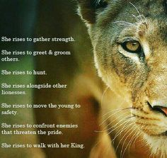 I breathe in my courage and exhale my fear quotes that i love love this picture that lisa bevere shared this morning i still need to read lioness arising fandeluxe Choice Image