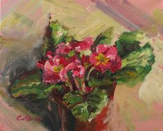 Pink Primrose by TheCaitGallery on Etsy