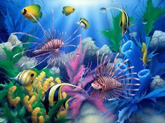 Lions of the Sea David Miller painting art animals fishes tropical sealife life color underwater coral reef ocean sea sunlight wallpaper background 3d Nature Wallpaper, Fish Wallpaper, Wallpaper Gallery, Underwater Wallpaper, Wallpaper Murals, Beautiful Wallpaper, Wallpaper Pictures, Wallpaper Ideas, Wall Murals