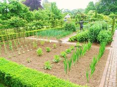 Rotation Is Key For Organic Gardening