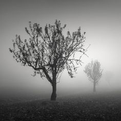 Low visibility by ilias varelas on 500px