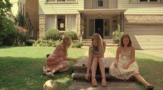 Lizzie, Nikki and Pansy in my garden - Taken by Sasha
