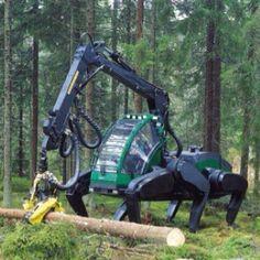 Crazy chainsaw