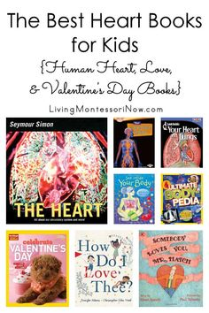 Recommendations of heart books for babies through elementary-age kids. Nonfiction & fiction books about the human heart love and Valentine's Day - Living Montessori Now Preschool Books, Preschool Themes, Montessori Activities, Activities For Kids, Preschool Kindergarten, Science Activities, Valentines Day Book, Valentines Day Activities, Valentines For Kids