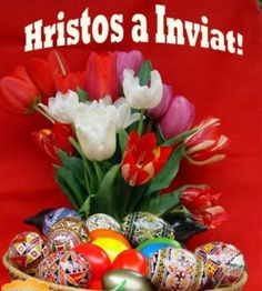 Hristos a Inviat , Paste fericit Easter Flowers, Holidays And Events, Happy Easter, Spring Time, Happy Halloween, Origami, Diy And Crafts, Christmas Bulbs, Table Decorations