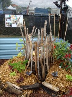 1000 Images About Keyhole Gardens On Pinterest Africans 640 x 480