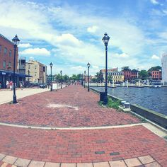 With a full time job and limited vacation days, I've learned to live for three day weekends and day-trip getaways. My birthday this year was no different, as I celebrated 23 in one of my favorite places, the Inner Harbor of Baltimore. I spent the weekend doing a few of my favorite things, seeing animals,…