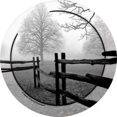 Thirstystone Occasions Drink Coasters, Set, Fence in the Mist, Multicolor