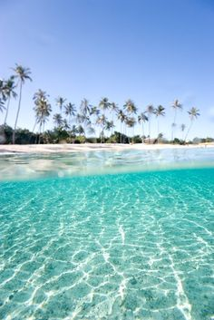 The Maldives. This is one beautiful ocean. Wow.