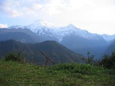 #Ghorepani_Poonhill_Trek : What do you think about this picture? Do plan your holidays with us to enjoy this beautiful region with full of enjoyment. #annapurna_region #ghorepani_poonHill #clearskytreks #hiking_trekking.