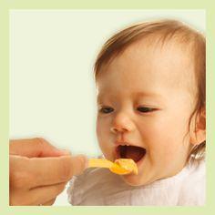 Mengenangabe Wie viel Beikost Dein Baby isst und worauf Du beim Füttern achten solltest, erfährst Du in diesem Artikel.
