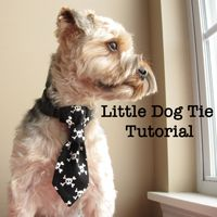 Little Dog Tie Tutorial - Dog Under My Desk  - I am going to make some of these cute little ties for my dogs.  For Bambi and Blue, I will just make them a little bigger.