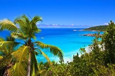 Yacht Charters in the British Virgin Islands
