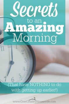 Want to know the SECRET to having an amazing morning? It doesn't matter what time you get up, or noon, this super easy tip could really change your WHOLE day! From Caroline @ Cow Country House Getting Up Early, Time Management Tips, Work From Home Moms, Working Moms, How To Start A Blog, Self Improvement, Clean House, You Changed, Good To Know