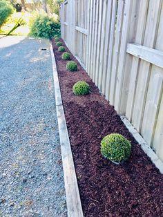 Stepping Stones, Garden Design, Sidewalk, Planters, Outdoor Decor, Outdoors, Gardening, Tattoos, Patio