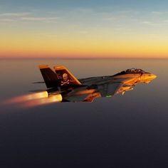 Phantom Phanatic — Fear the Bones ☠️! Stealth Aircraft, Us Navy Aircraft, Us Military Aircraft, Military Jets, Fighter Aircraft, Grumman Aircraft, Air Fighter, Fighter Pilot, Fighter Jets
