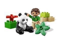 14 Best Pandaboard images  ab1dc2efef
