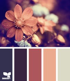 "flora tones [another scheme I LOVE:  muted, ""my"" color of coral/peach and dark mauve; the lipstick colors I select]"