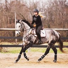 Who wants to go on a trail ride with me on Labor Day? We could jump XC too if you'd like! I'm going to go on Bentley.