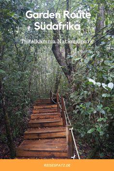 Reisetipps für die Garden Route in Südafrika. Wandertipps für den Tsitsikamma Nationalpark