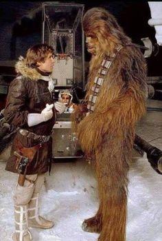 Chewie and Han Bass Fishing Shirts, Star Wars Cast, Star Wars Luke Skywalker, Star Wars Ships, The Empire Strikes Back, Harrison Ford, Star Citizen, Love Stars, Sci Fi Movies