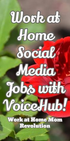 Home-Based QA Jobs with Crossover | 40 hours and Crossover on work from home job sites, work from home recruiter, work from home resume,