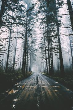 Find images and videos about photography, nature and travel on We Heart It - the app to get lost in what you love. Beautiful World, Beautiful Places, Adventure Is Out There, Nature Photos, The Great Outdoors, Wonders Of The World, Paths, Nature Photography, Scenery