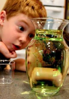 19 DIY Science Projects For Kids, Even Albert Einstein Didn't Know About #15. - http://www.lifebuzz.com/kids-science/
