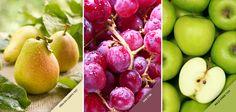 """♪♫♪ """"Pêra, uva, maçã, salada mista. Diga o que você quer, sem eu dar nenhuma pista""""♪♫♪  Você também brincava com as cores das frutas na sua infância? #Cores #Frutas #PaletadeCores"""