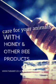 Bees are amazing, and honey and other natural bee products are great for animals - including horses! Read more at www.taranet.co.uk