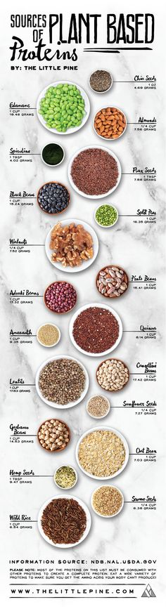 If you are a vegan, you can totally get all your protein needs met by eating a whole food plant-based diet. Many vegan athletes have proved this point, but you need to be smart about where to find out. Thats why this vegan, plant-based protein chart is re Healthy Snacks, Healthy Recipes, Diet Recipes, Diet Tips, Diet Meals, Healthy Nutrition, Healthy Grains, Diet Foods, Stay Healthy
