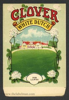 CLOVER, White Dutch, Antique Seed Packet