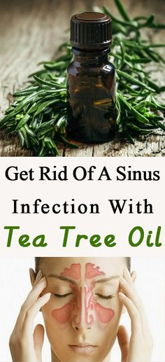 Get Rid Of A Sinus Infection With Tea Tree Oil