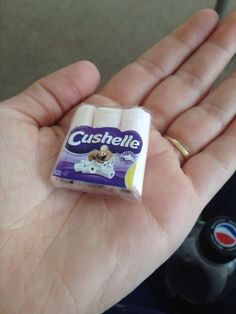 A tiny packet of toilet rolls for barbies! Made from normal toilet paper and the toilet paper cardboard tube, some sort of plastic packaging and a small toilet roll picture from a leaflet. :)