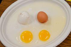 MLK Day...brown egg white egg...same on the inside