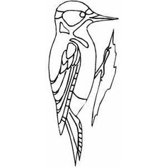 find this pin and more on coloring pictures woodpecker