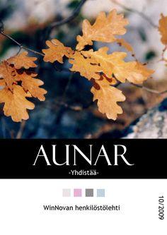 WinNovan henkilöstölehti Aunar, 10/2009 Taitto, kannen kuva: Henna Engren