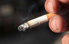 Plantas que nos ajudam a abandonar o cigarro