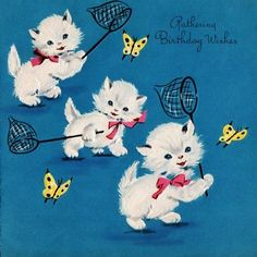 Kitten & butterfly birthday card